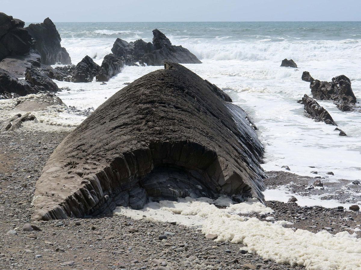 The Whaleback