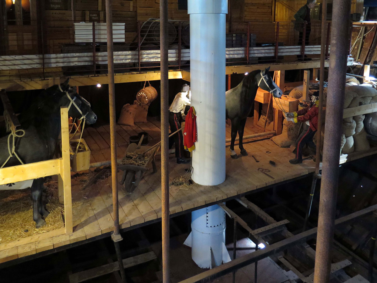Animals and cargo inside the ship's hull