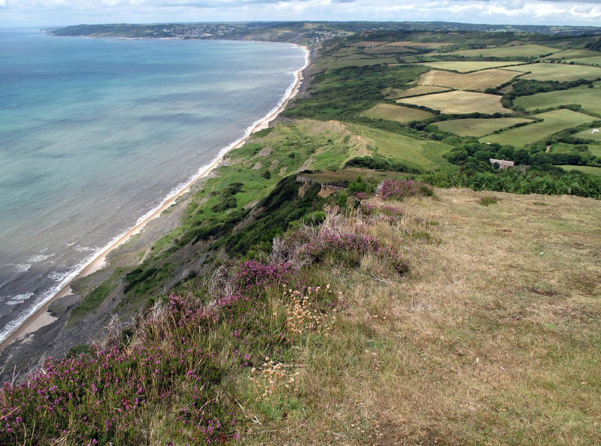 The View from Golden Cap towards Lyme Regis